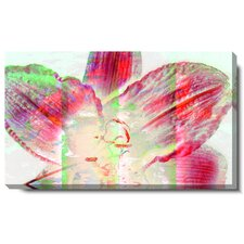 "<strong>Studio Works Modern</strong> ""Snow Flower"" Gallery Wrapped Canvas Wall Art"