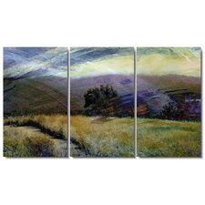 Sonoma Meadow Gallery Wrapped by Zhee Singer 3 Piece Painting Print on Canvas (Set of 3)
