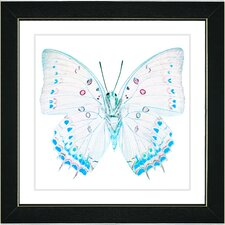 """White Butterfly"" Framed Fine Art Giclee Print"