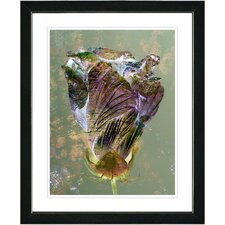 """Autumn Bud"" Framed Fine Art Giclee Print in Amber"