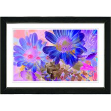 "<strong>Studio Works Modern</strong> ""May Daisies"" Framed Fine Art Giclee Print"