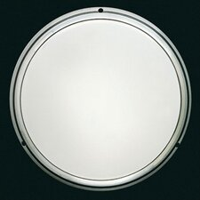 Pantarei 390 Wall and Ceiling Light