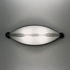Mitasi Indoor/Outdoor Wall and Ceiling Light