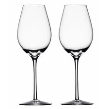 <strong>Orrefors</strong> Difference Fruit Wine Glass (Set of 2)