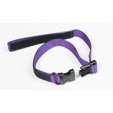 Co-Leash All-in-One Collar and Leash