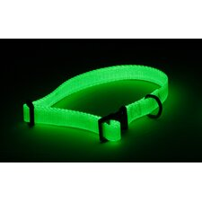 Spectra-Glo Glowing Dog Collar
