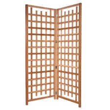 Trellis Screen (Set of 2)
