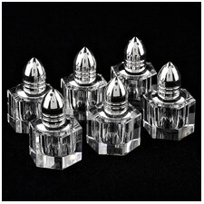 Individual 6 Piece Salt and Pepper Shaker Set