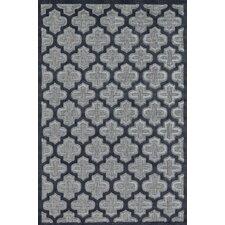 Raphia II Black/Charcoal Indoor/Outdoor Area Rug