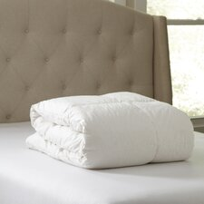 Birch Lane Essential Down Comforter