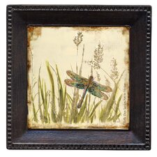 Dragonfly Meadow Ambiance Coaster Set (Set of 4)