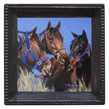 Horse Talk Ambiance Coaster Set (Set of 4)