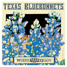 Bluebonnets Seed Occasions Coasters Set (Set of 4)