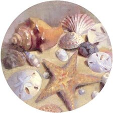 Sea Shells Coaster (Set of 4)