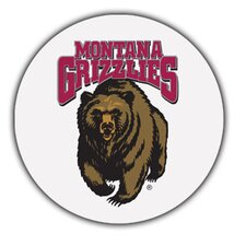 University of Montana Collegiate Coaster (Set of 4)