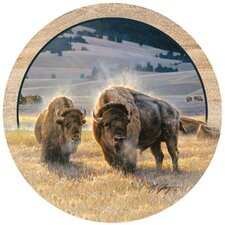 Hidden Valley Buffalo Coaster (Set of 4)