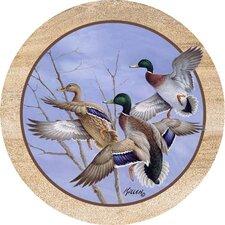 Mallards In Flight Coaster (Set of 4)