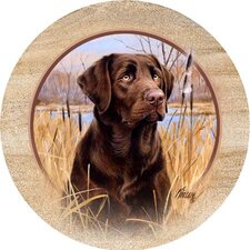 Killen's Chocolate Lab Coaster (Set of 4)