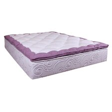 "Splendor 13"" Memory Foam Mattress"