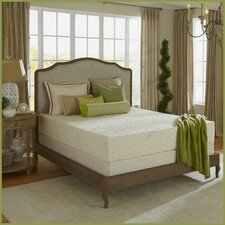 "Natural Bliss 9"" Latex Foam Medium Firm Mattress"
