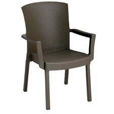 Havana Dining Arm Chair
