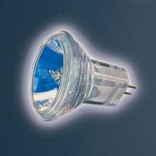 Ushio Halogen Light Bulb