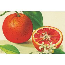 Oranges Placemat (Set of 6)