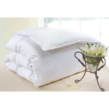Polka Dot Medium Cotton Goose Down Pillow in White