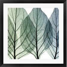 Celosia Leaves II by Steven N. Meyers Framed Photographic Print