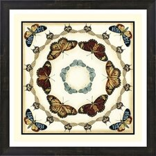 Butterfly Collector II by Chariklia Zarris Framed Graphic Art