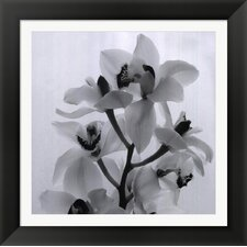 Orchid Spray I by Tom Artin Framed Photographic Print