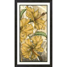 Hibiscus Song II by Jennifer Goldberger Framed Painting Print