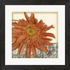 Botanica I by Jennifer Goldberger Framed Painting Print