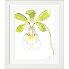Orchid Beauty I by Jennifer Goldberger Framed Painting Print