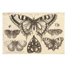 'Vintage Butterfly II' by Julia Kearney Painting Print