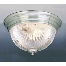 2 Light Ceiling Fixture Flush Mount