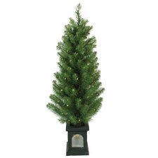 5' Green Concord Pine Christmas Tree with 70 Clear Twinkling Lights with Window Pot and Stand