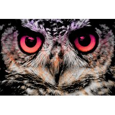 """Night Owl"" Graphic Art on Canvas"