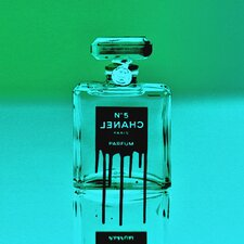 """Icon In A Bottle Green"" Canvas Art"