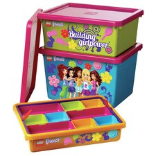 Friends Sorting System and Storage Toy Box