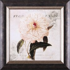 <strong>Art Effects</strong> White Peony I Framed Artwork