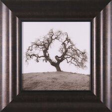 "Hillside Oak Tree Petite Wall Art - 19"" x 19"""