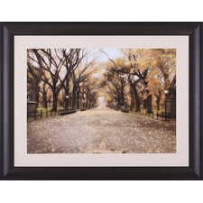 <strong>Art Effects</strong> Central Park I Framed Artwork