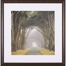 <strong>Art Effects</strong> Corridor of Cypress Framed Artwork