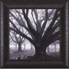 <strong>Art Effects</strong> Oak Grove, Winter Framed Artwork