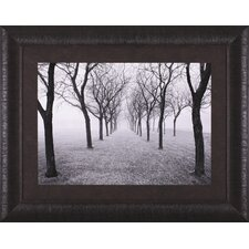 <strong>Art Effects</strong> Tunnel of Trees Framed Artwork