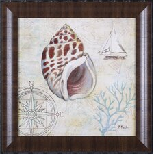 <strong>Art Effects</strong> Discovery Shell IV Wall Art