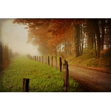 Foggy Morning on Hyatt Lane by Danny Head Photographic Print on Canvas