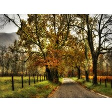 Rainy Morning on Sparks Lane by Danny Head Photographic Print on Canvas