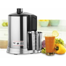 Professional Stainless Steel Juicer